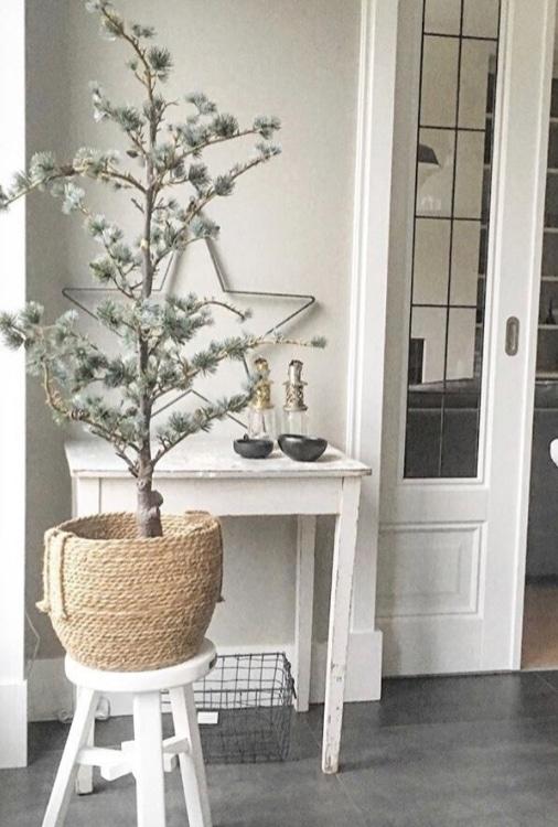 ceder kerstboom in mand